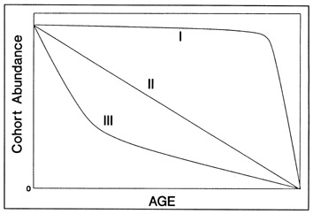 FIG. 14. Hypothetical survivorship curves (modified from Slobodkin 1961). A type I curve has little mortality senescence; the Type II curve has an equal absolute amount of mortality in all life stages; Type III is frequently used to model fish mortality since it indicates that a constant proportion of the cohort dies through time.