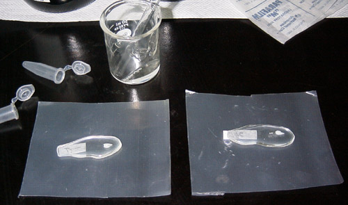 Pour a few mls of epoxy into a pear shape (~ 2 cm long and 1-2 cm wide) on a sheet of Parafilm